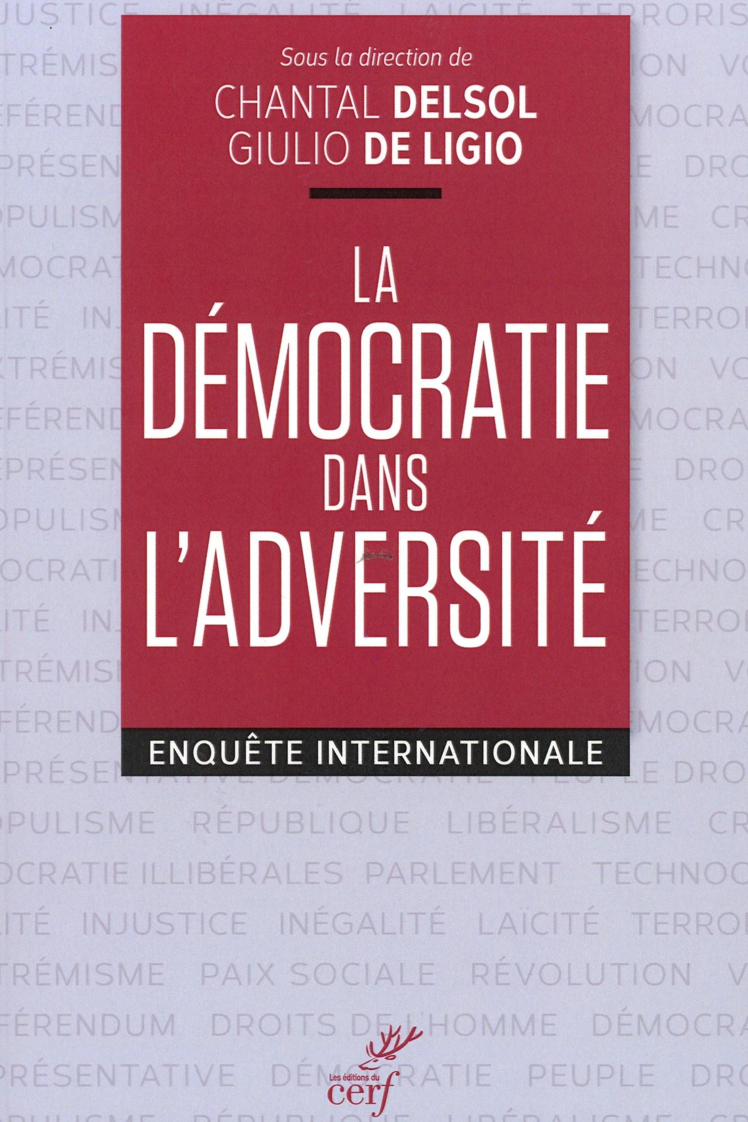 Livre la démocratie dans l'adversité