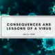 Thierry de Montbrial covid 19 consequences and lessons